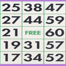 Variante bingo 90 boules, 75 et 30